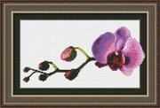 """0108-Юнона """"Маленькая орхидея"""" 23,5х14,5 см"""