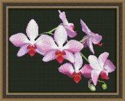 "0116-Юнона ""Ветка орхидеи"" 22,5х17,5 см"