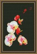 "0118-Юнона ""Розовая орхидея"" 20х31 см"