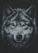 "02.001-Палитра ""Взгляд волка"" 21х27 см"