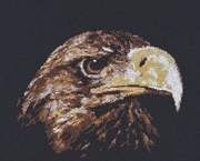 """02.003-Палитра """"Взгляд орла"""" 26х22 см"""