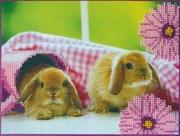"""АВ-050-Абрис Арт """"Кролики 2"""" 23х18 см"""