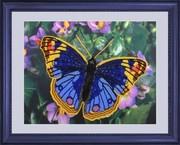 "101-Butterfly ""Бабочка"" 25х32 см"