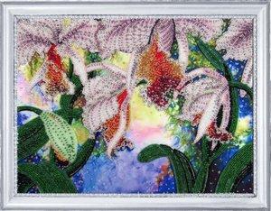 "230-Butterfly ""Сияние орхидей"" 26х34 см"