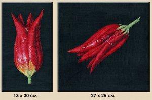 """491-Овен """"Тюльпаны-диптих"""" 27х25;13х30 см"""