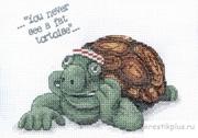 "CC-101 ""Черепаха Фрэнк"" 16х12 см"