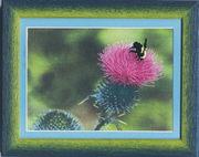 """РК-028ЧМ """"Пчела на репейнике"""" 18,5х13,5 см"""